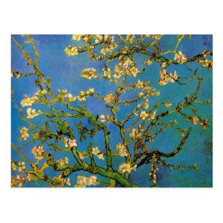 Arbre d'amande de floraison de Van Gogh, fleurs Cartes Postales