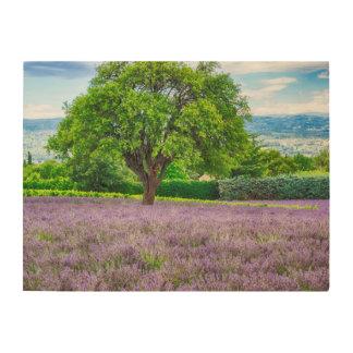Arbre dans le domaine de lavande, France Impression Sur Bois