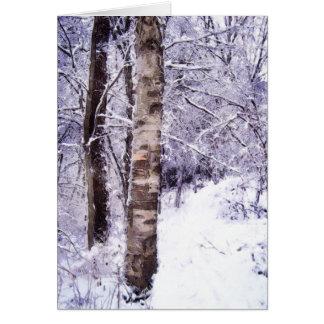 Arbre de bouleau d'hiver carte de vœux