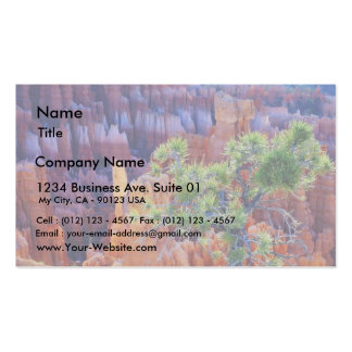 Arbre de canyon carte de visite standard