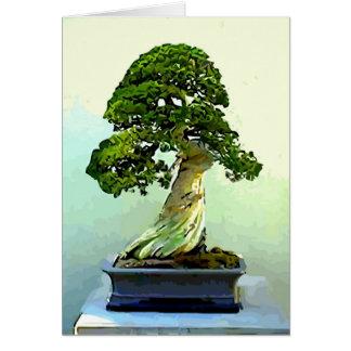 Arbre de Cypress de bonsaïs Carte De Vœux
