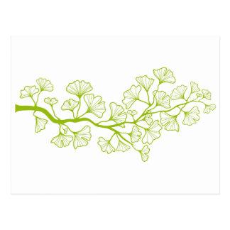 arbre de ginkgo avec le feuille vert carte postale