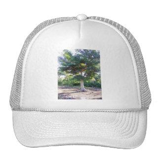 Arbre de Sagesse-chapeau Casquettes De Camionneur