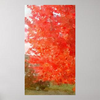 Arbre d'érable de chute dans polychrome, aquarelle poster