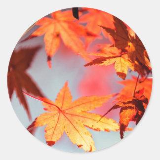 Arbre d'érable rouge de feuille d'automne sticker rond