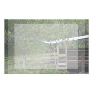 arbre et vieille photo de la Floride de grange Papier À Lettre