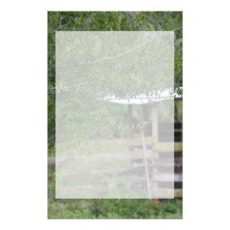 arbre et vieille photo de la Floride de grange Papiers À Lettres