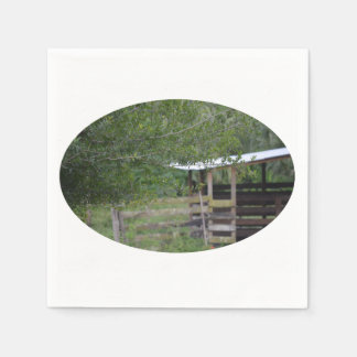 arbre et vieille photo de la Floride de grange Serviettes En Papier