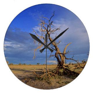 Arbre mort d'épine de chameau (acacia Erioloba) Grande Horloge Ronde