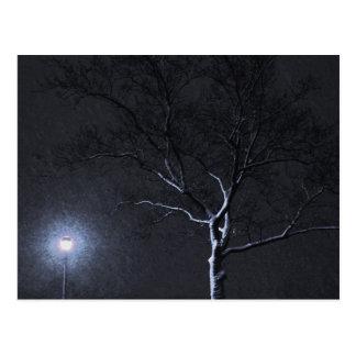 Arbre noir et blanc d'hiver de paysage dans le pai cartes postales
