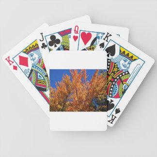 Arbre orange du feu cartes à jouer