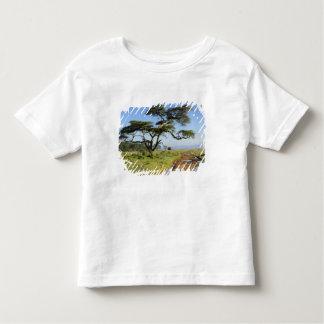Arbre primitif de chemin de terre et d'acacia, lac t-shirt pour les tous petits