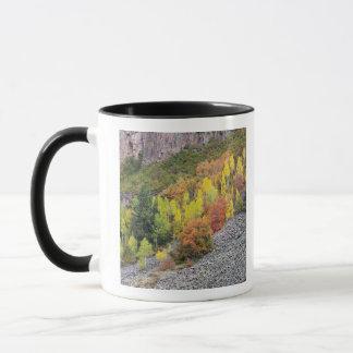 Arbres 10 de rivière et de tremble de Provo Mug