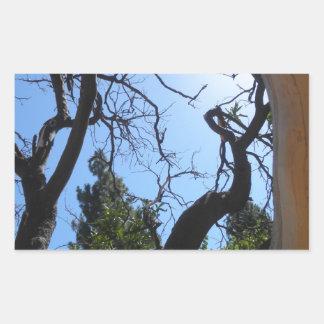 Arbres artistiques de Twirly Autocollant En Rectangle