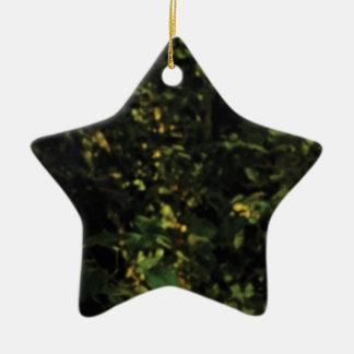 arbres dans le buisson ornement étoile en céramique