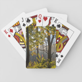 Arbres dans les cartes de jeu de brouillard cartes à jouer