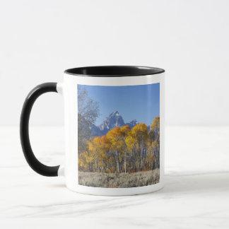 Arbres d'Aspen avec la gamme de montagne de Teton Mug