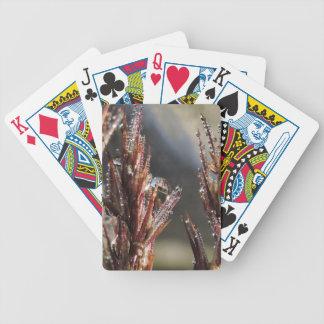 Arbres de diamant jeu de poker