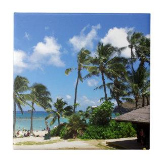 Arbres de noix de coco d'Hawaï de baie de Hanauma Petit Carreau Carré