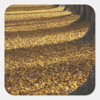 Arbres de peuplier en automne, lac Wanaka, Otago, Sticker Carré