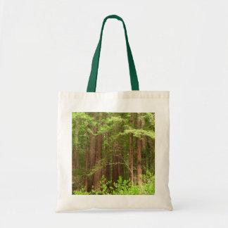 Arbres de séquoia au monument national en bois de sac