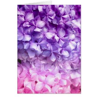 Arc-en-ciel d'hortensia carte de vœux