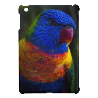 Arc-en-ciel Lorikeet Coques iPad Mini