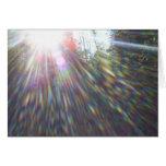 Arcs-en-ciel dans les arbres carte de vœux