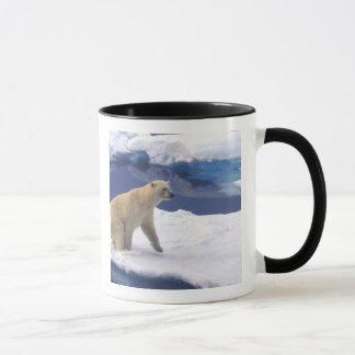 Arctique, le Svalbard, morse étant amical Mug