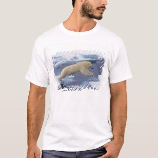 Arctique, le Svalbard, ours blanc se prolongeant T-shirt