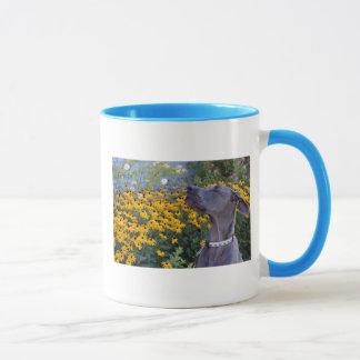 Arrêtez et sentez la tasse de fleurs