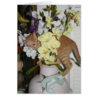 Arrêtez et sentez les fleurs carte de vœux
