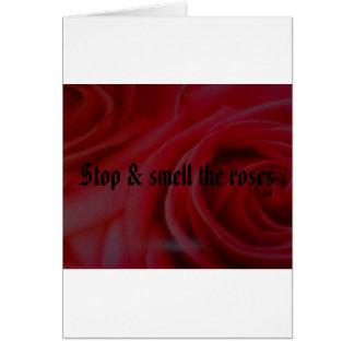 Arrêtez et sentez les roses carte de vœux