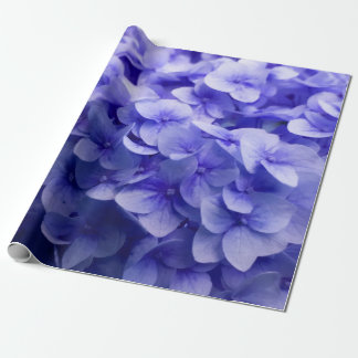 Arrière - plan blanc de fleur d'hortensia papier cadeau