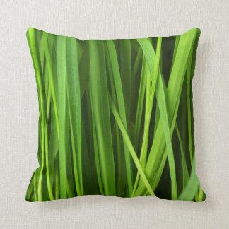 Arrière - plan d'herbe verte oreiller