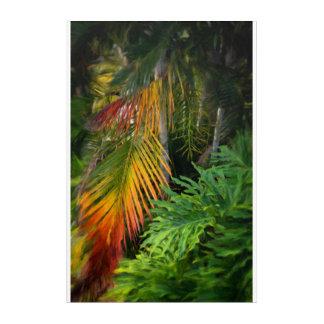 """Art acrylique de mur de lueur de paume, 20"""" x 30"""""""
