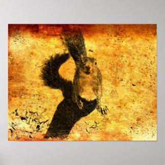 Art animal - écureuil poster