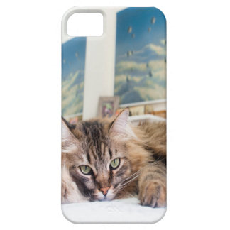 Art Chat Coques Case-Mate iPhone 5