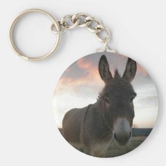 Art d'âne porte-clés