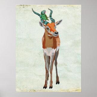 Art d'antilope et de perroquet affiches