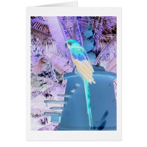 Art de bruit de perroquet cartes de vœux