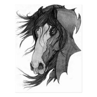 """Art de cheval d'étalon de Clydesdale de """"esprit"""" Carte Postale"""