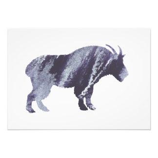 Art de chèvre impressions photographiques