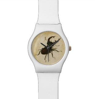 Art de cru de la Renaissance de scarabée de mâle Montres Cadran