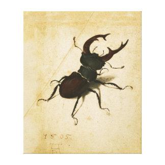 Art de cru de la Renaissance de scarabée de mâle Toiles