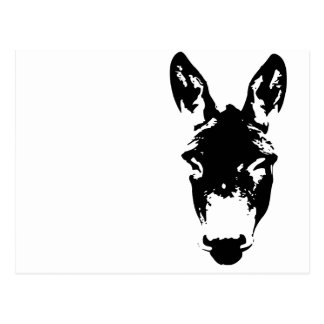Art de dessin de graffiti d'âne ou de mule cartes postales
