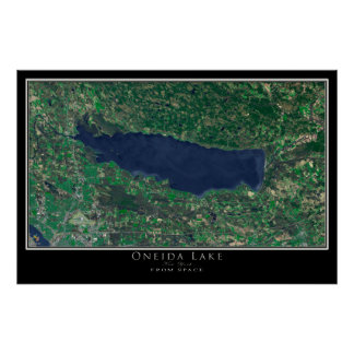 Art de satellite de New York de lac Oneida Posters