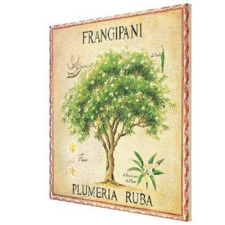 Art déco botanique vintage d'arbre de Plumeria Toiles
