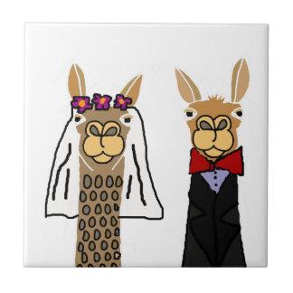 Art drôle de mariage de jeunes mariés de lama petit carreau carré