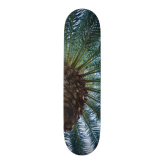 Art du palmier skateboard 20,6 cm
